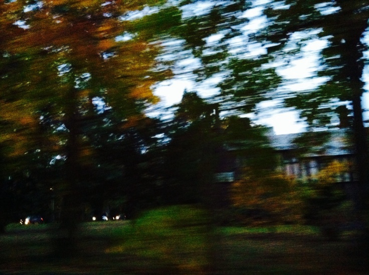 Fall is driving by